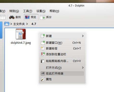 dolphin4.7-1.jpeg (474×383)